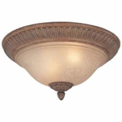 Dolan Lighting 2408-162 Carlyle - Two Light Flush Mount