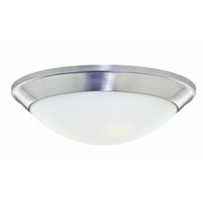 Dolan Lighting 5402-09 Rainier - Two Light Flush Mount