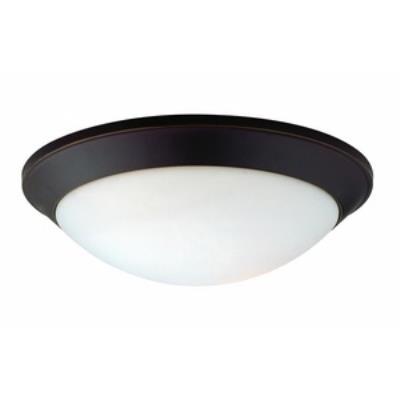 Dolan Lighting 5402-78 Rainier - Two Light Flush Mount