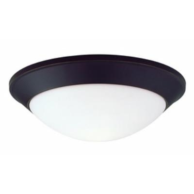 Dolan Lighting 5403-78 Rainier - Three Light Flush Mount
