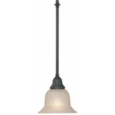 Dolan Lighting 649-78 Richland - One Light Mini - Pendant