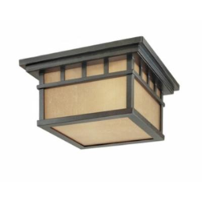 Dolan Lighting 9119-68 Barton - Two Light Outdoor Flush Mount