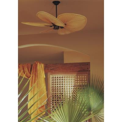 "Fanimation Fans FP320 Islander - 15"" Ceiling Fan (Motor Only)"