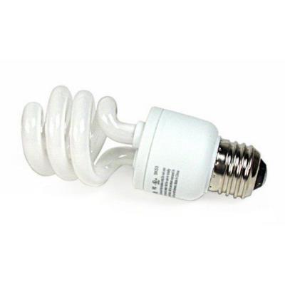 Kichler Lighting 4052 Accessory - 13W E26 Fluorescent Bulb
