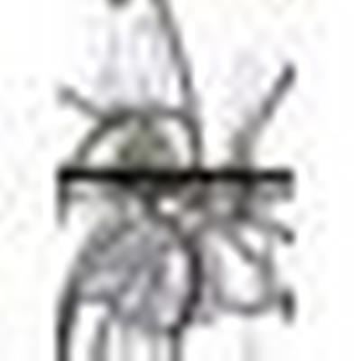 Maxim Lighting 25144 Orbit - Six Light Chandelier