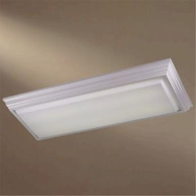 Minka Lavery 1002-44-PL Kitchen Fluorescent