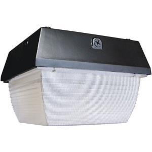 """12.41"""" 40W 1 LED Outdoor Flush/Wall Pack"""