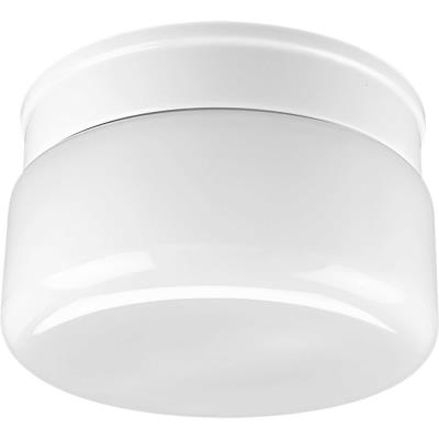 Progress Lighting P3518-30 Two Light Flush Mount