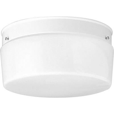 Progress Lighting P3520-30 Two Light Flush Mount