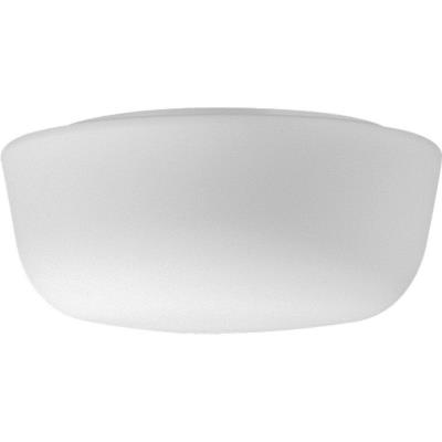 Progress Lighting P3528-60 Two Light Flush Mount