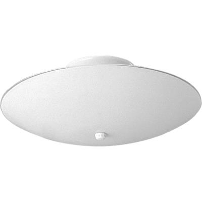 "Progress Lighting P4609-30 12"" Two Light Flush Mount"