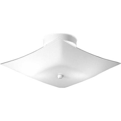 Progress Lighting P4961-30 Two Light Flush Mount