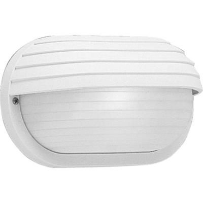 Progress Lighting P5706-30 One light outdoor wall mount