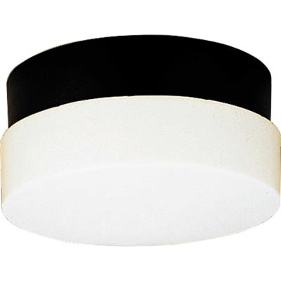 Progress Lighting P5711-31 Hard-Nox - Two Light Outdoor Flush Mount