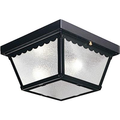 Progress Lighting P5729-31 Two Light Outdoor Flush Mount