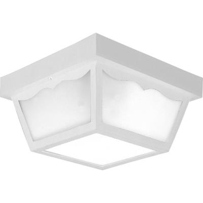Progress Lighting P5745-30 Two Light Outdoor Flush Mount