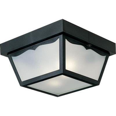 Progress Lighting P5745-31 Two Light Outdoor Flush Mount