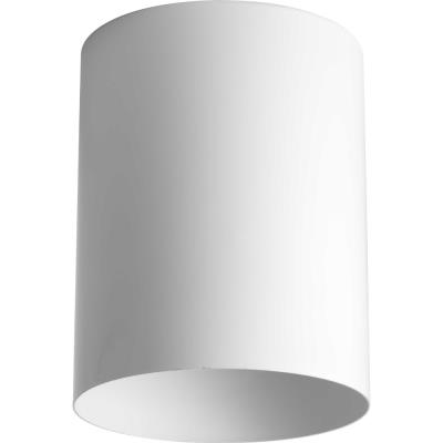 Progress Lighting P5774-30 Cylinder - One light flush mount