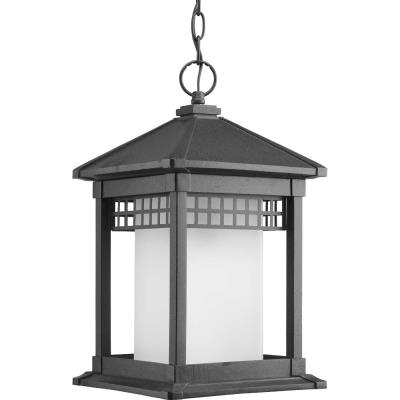 Progress Lighting P6500-31 Merit - One Light Hanging Lantern