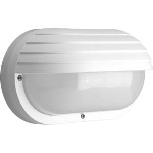 Two Light Oval Wall/Flush Mount