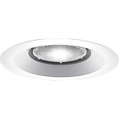 """Progress Lighting P8072-28 Accessory - 6"""" Lensless Shower Trim"""