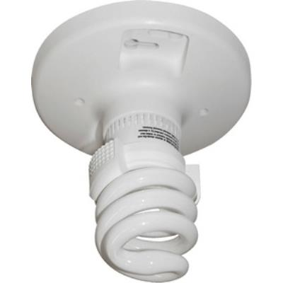Quorum Lighting 7-8222 One Light Flush Mount