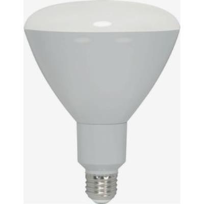 Satco S9046 LED Bulb - 13R40-2700K-850L-D