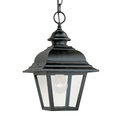 Sea Gull Lighting 6016-12 One Light Outdoor Pendant Fixture