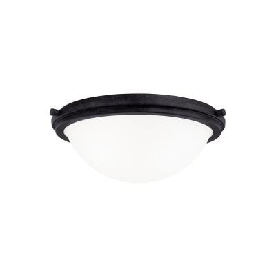 Sea Gull Lighting 75661 Winnetka - Two Light Ceiling Flush Mount