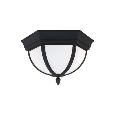 Sea Gull Lighting 79136BLE-12 Ardsley Court - Two Light Outdoor Flush Mount