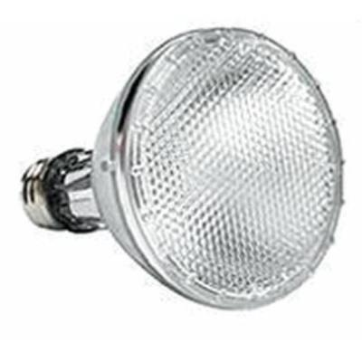Tech Lighting 300BHV421 Accessory - Halogen PAR38 Medium Base 120 Volt Replacement Lamp