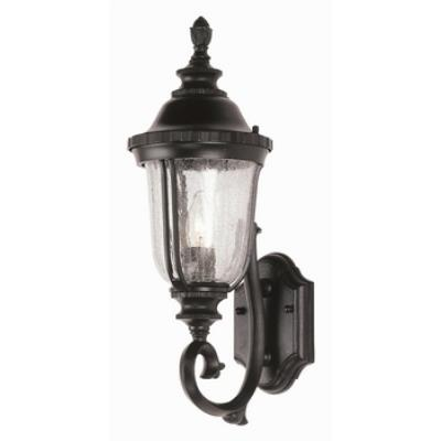 Trans Globe Lighting 4021 Classic - One Light Wall Bracket - Up