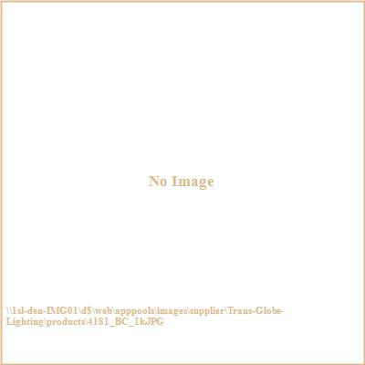 Trans Globe Lighting 4181 Classic - One Light Outdoor Wall Bracket