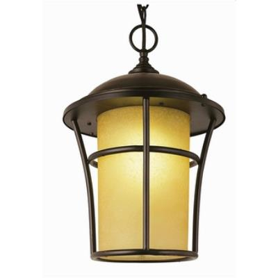 Trans Globe Lighting 5255 WB One Light Outdoor Large Hanging Lantern