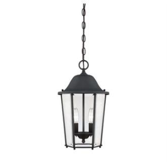 Savoy House 5-6210-BK Truscott - Two Light Outdoor Hanging Lantern