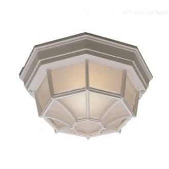 Thomas Lighting SL7458 One Light Outdoor Flush Mount